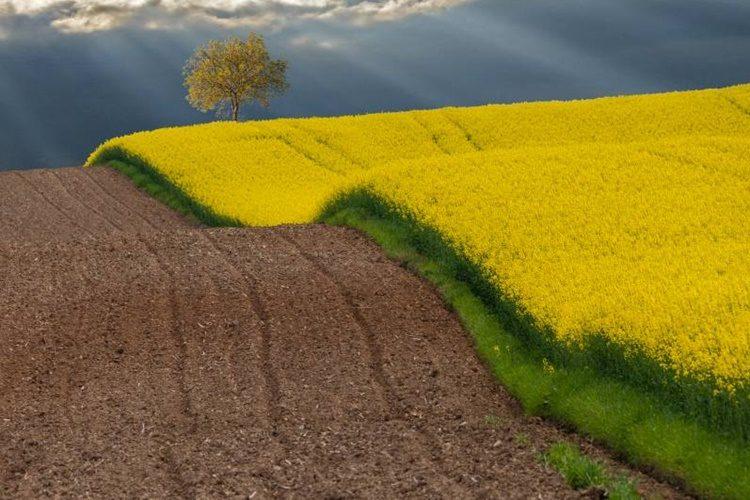 Je li Koprivničko-križevačka županija idealno mjesto za život?