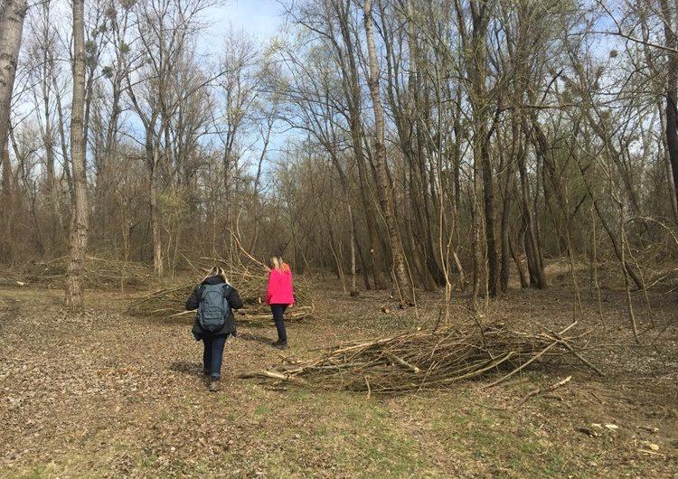 Počelo uređenje poučne staze u Dravskoj park-šumi u Varaždinu