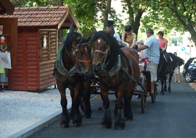 """Od danas pa sve do rujna """"Ljeto u Krapini"""" – događanja za najmlađe i za one starije"""
