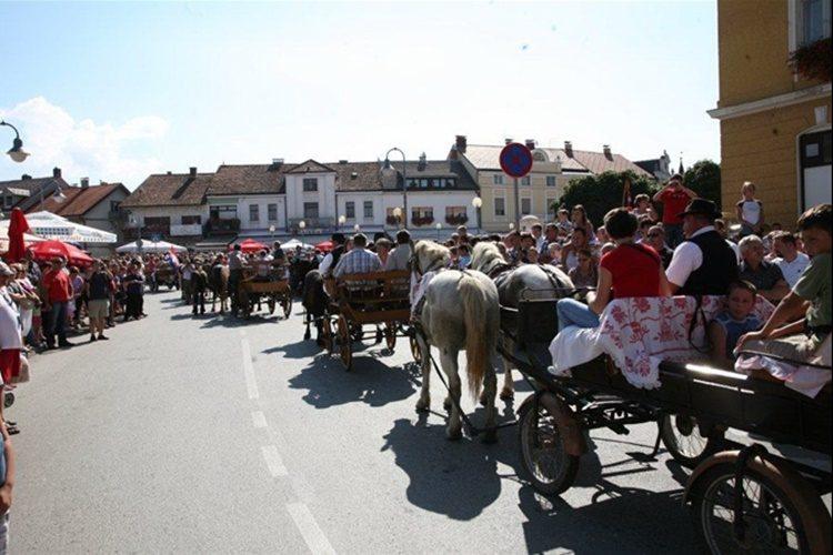 NAJAVA: Vozočašće u Mariju Bistricu