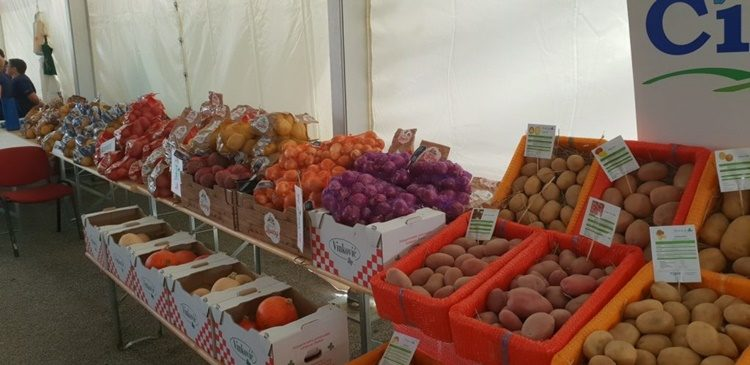 POZIV poljoprivrednim proizvođačima krumpira na stručni skup