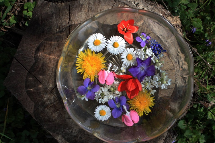 Dan koji počinje umivanjem u cvijeću: Znate li zašto se slavi Cvjetnica?