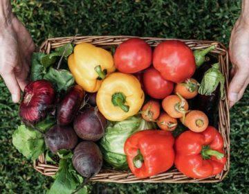 Ukrao povrće i oštetio travnjak, cvjetnjak, voćnjak i sadnice