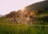 """Uživancija uz Muru na dva kotača – uskoro besplatna biciklijada """"Amazon of Europe"""""""