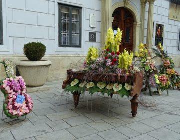 FOTO Najbolji hrvatski floristi uredili Korzo: Uživajte u prekrasnim cvjetnim instalacijama