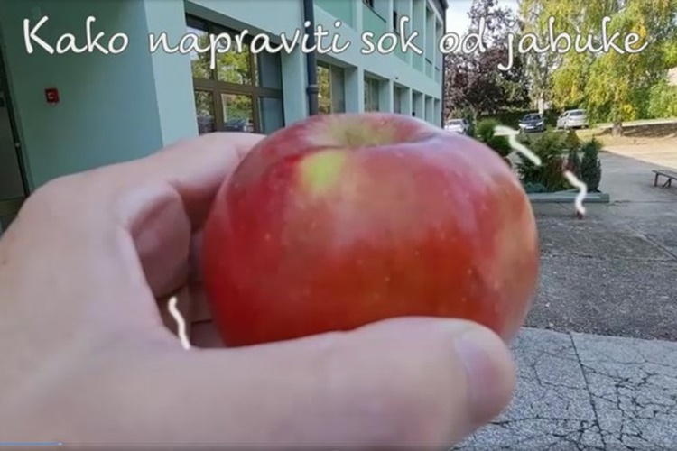 Kako napraviti sok od jabuke?