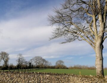 FOTOGALERIJA: Zelena Irska kao otok sreće